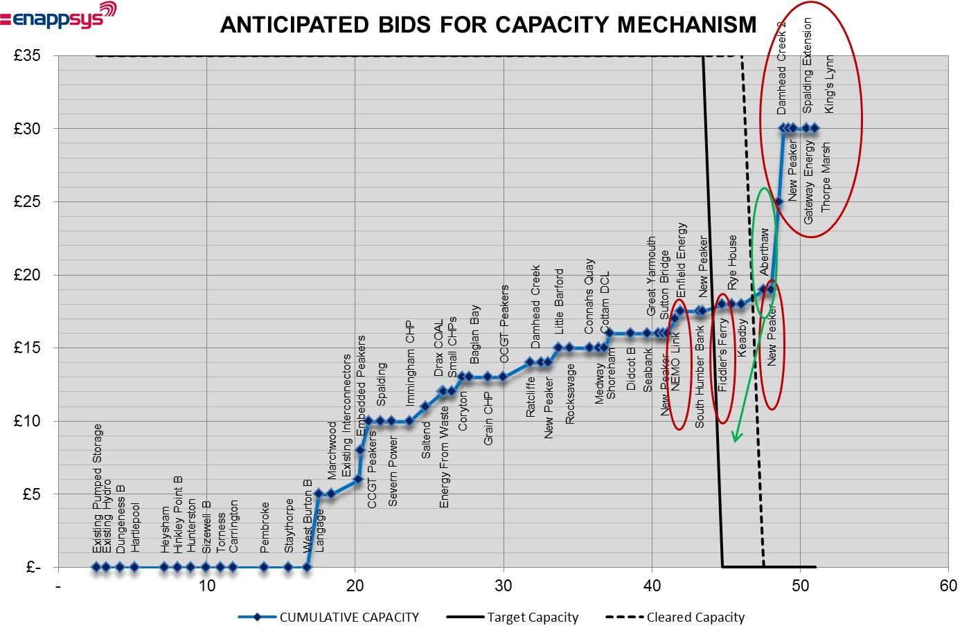 Bids for Capacity Mechanism