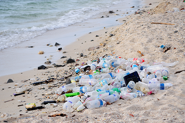 Plastic Rubbish on Beach