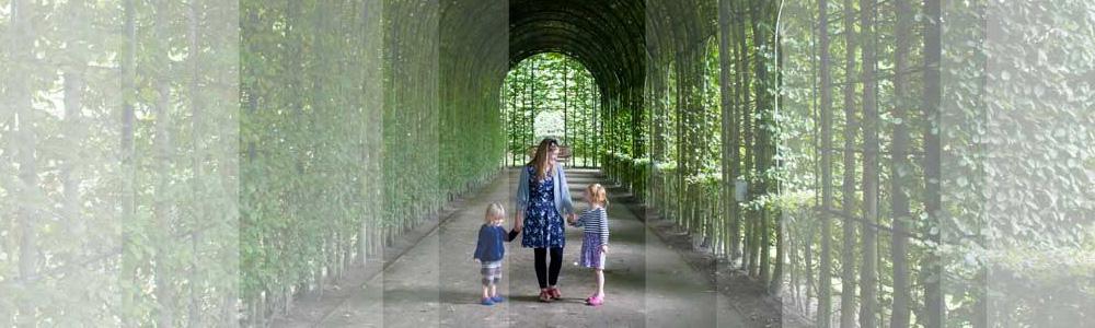 Vine archway at Alnwick gardens